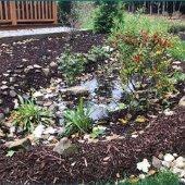 Master Rain Gardener Program