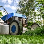 Yard waste grass clippings