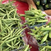 Green Beans - North Union Farmers Mkt Sunset Markets at VAD