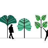 Section from Olga Ziemska's City of Trees
