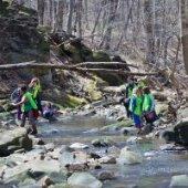 Doan Brook Stream Sweep event