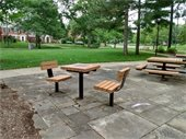 Game Table and Picnic Area