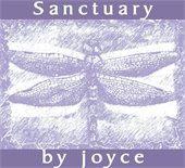 Sanctuary by Joyce